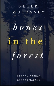 Bones-in-the-Forest-Kindle