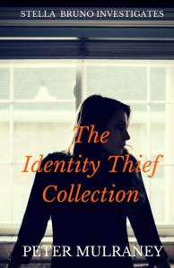 The_Identity_Thief_C_Cover_for_Kindle